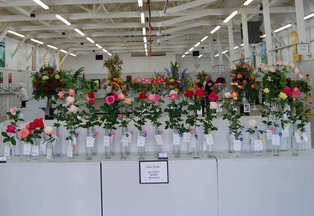 Coastal Carolina Flower Show 2